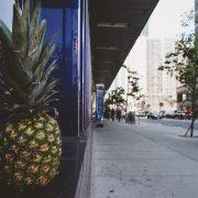 winkelen pineapple